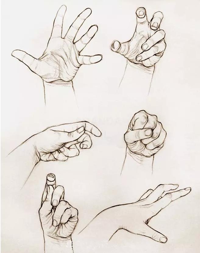 不同手的手绘图